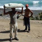 Kuba: Tortenträger am Strand. Foto: Anke Biedenkapp